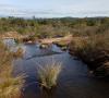 Ruisseau temporaire de la plaine des Maures