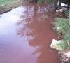Pollution oléicole sur le ruisseau des écrevisses